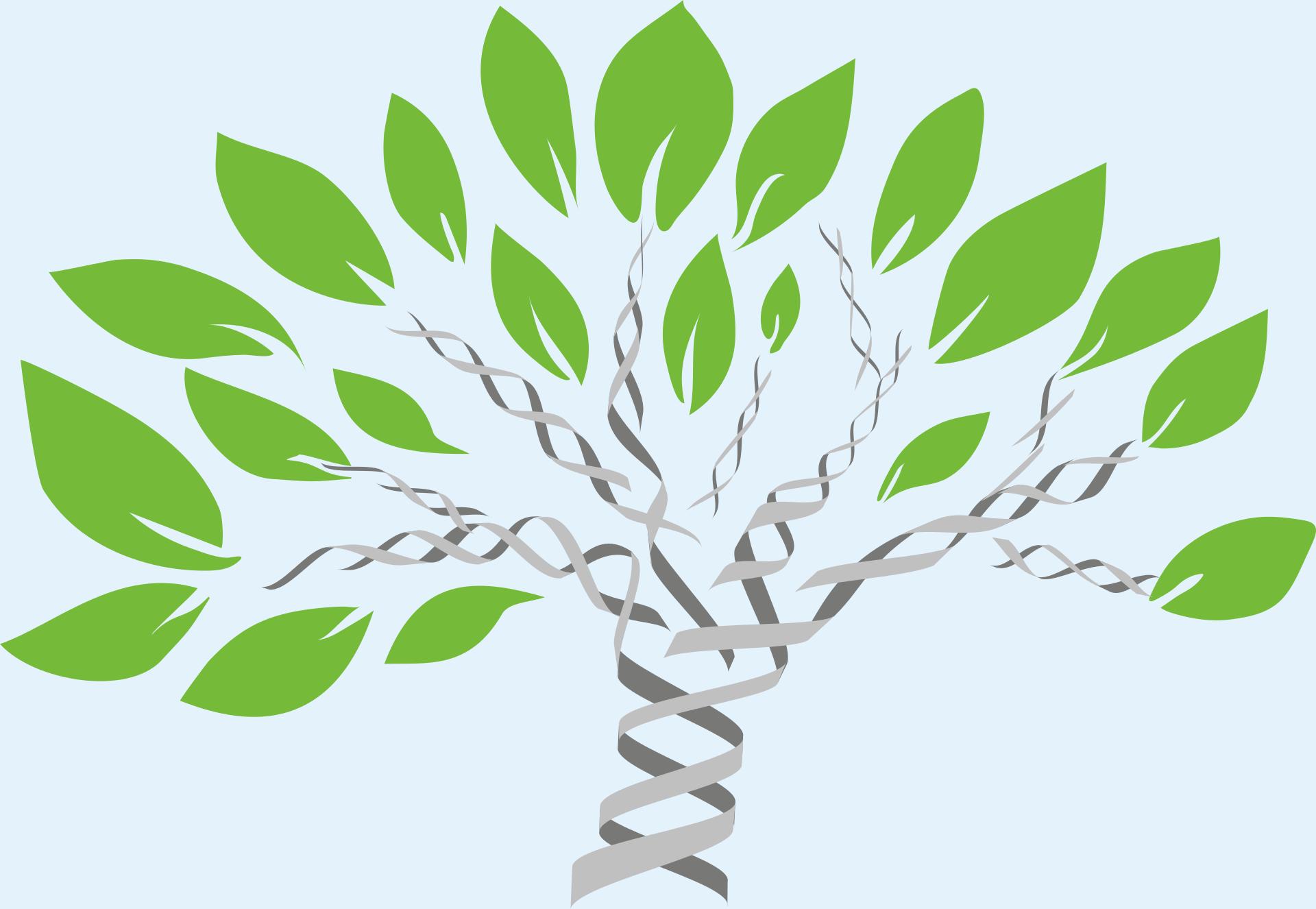 gene-tree-1490270-gene-tree-mcmurryjulie