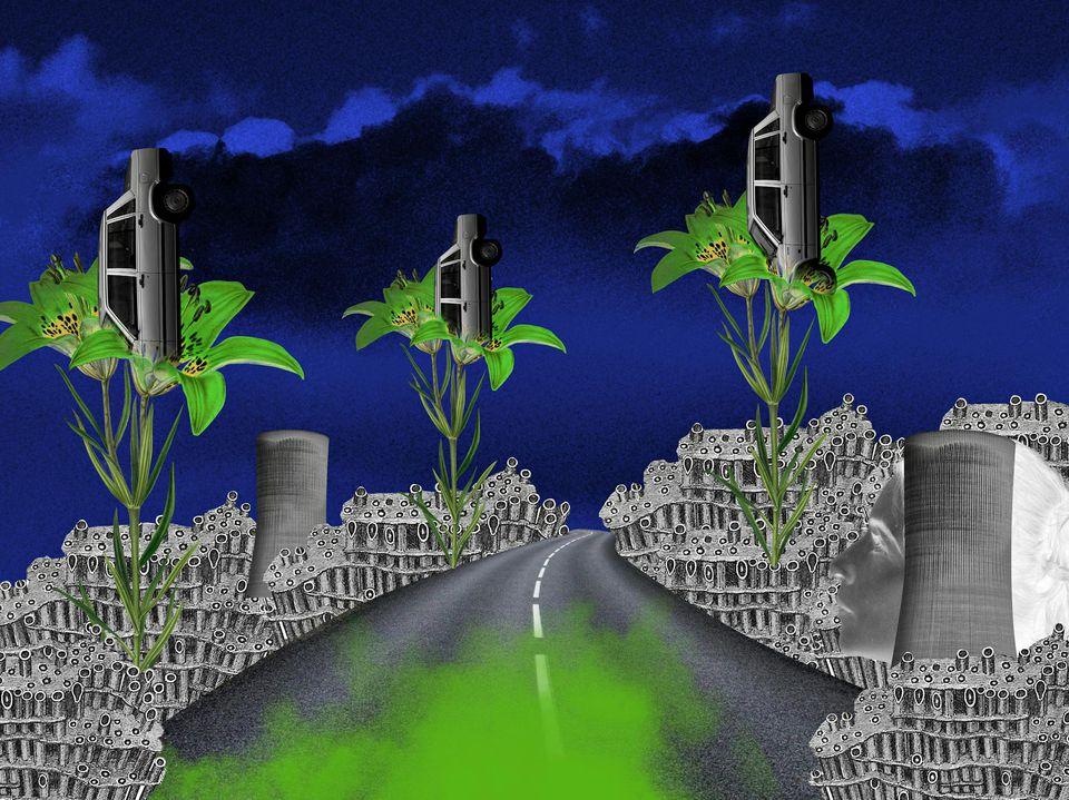 voitures dans les plantes