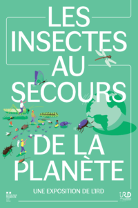 Fête de la science incestes
