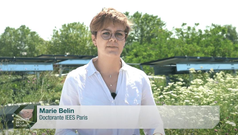 Marie Belin